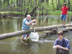 David Baer looks for benthic macroinvertebrates, or  what we call critters, with a net.